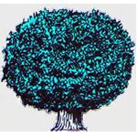 Schwarzwald-Baumdienst Junge Logo